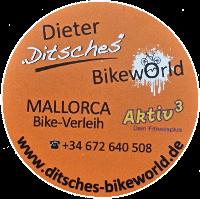 Ausflüge mit Super-Bikes zu guten Konditionen.